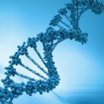 Передается ли варикоз по наследству?