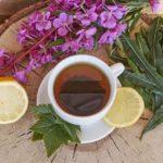 Можно ли пить Иван чай при варикозе: польза и вред кипрея