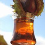 Конский каштан: лечебные свойства при варикозе
