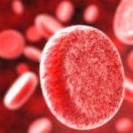 Травы и народные средства для разжижения крови при варикозе